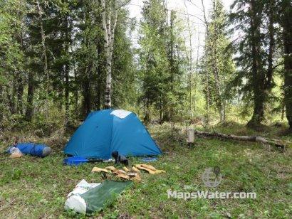 Стоянка в лесу после острова Кыдзьрасшарди
