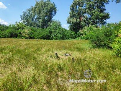 Ровная поляна на острове