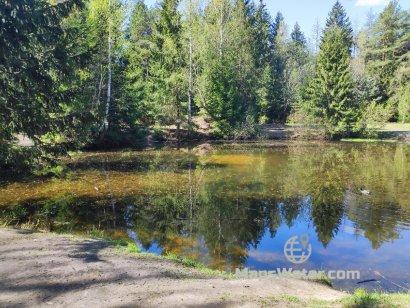 У озера Лесное Чмурово возле Минска